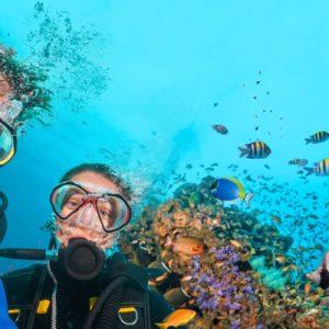 Séjour anglais et plongée Malte